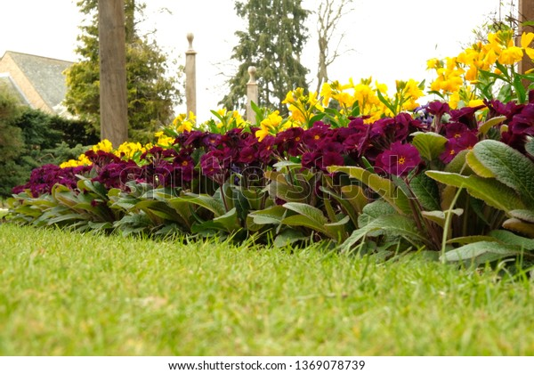 Town park with formal floral displays in spring