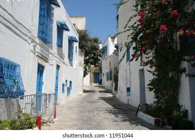 The town of Sidi bou Said in Tunisia