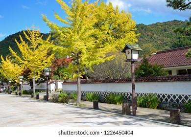 Townscape of Tsuwano Tonomachi street in autumn, Shimane prefecture, Japan