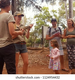TOWNSVILLE, AUSTRALIA - June 29, 2018. Tourists visit Billabong Sanctuary, south of Townsville during school holidays. Billabong Sanctuary is a 27-acre wildlife sanctuary for native Australian animals
