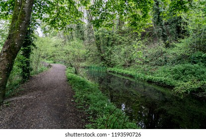 Towpath along the disused Severn and Thames Canal near to Chalford, Stroud, Gloucestershire, UK
