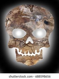 Toxic Wooden Skull