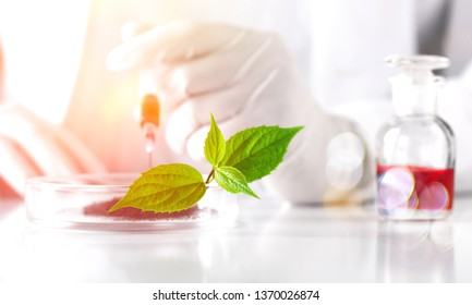 Toxicology add agent alternative analysis anti-aging assistant