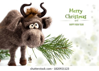 Toy bull. The bull is a symbol of the new year 2021. Knitted brown toy bull on a white background, with a pine branch in his mouth. Copy space, close-up, selective focus. Happy Christmas.