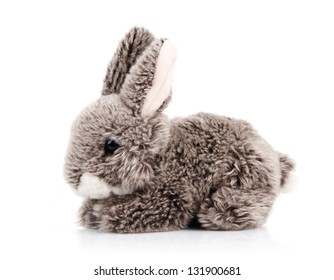 toy bunny isolated on white