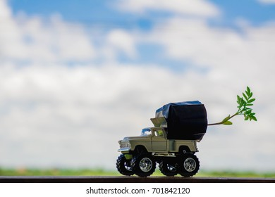 Toy car carrying marigold seedling has the sky as the background.