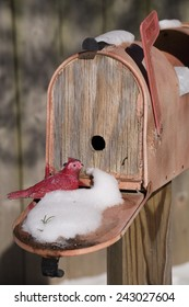Toy Cardinal sitting on door of bird house mail box