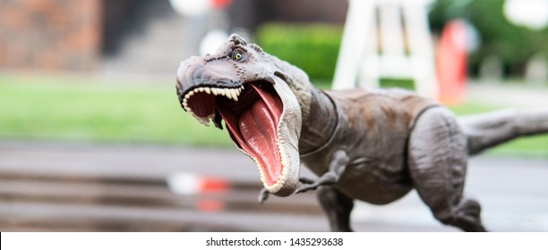 Types On Dinosaur Stock Photos, Images & Photography | Shutterstock