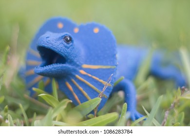 Toy Dinosaur Outside