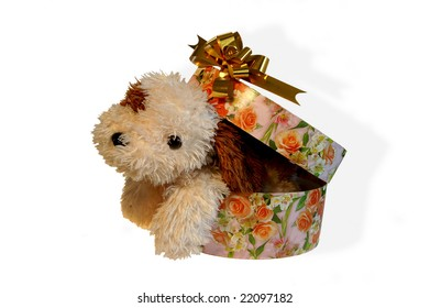 toy dog in present box