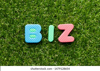 Toy foam letter in word biz (abbreviation of business) on green grass background
