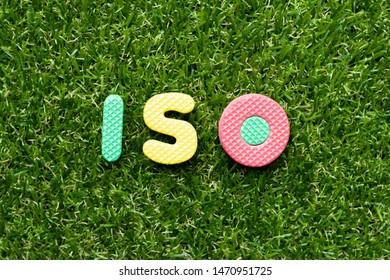 Toy foam letter in word iso on green grass background