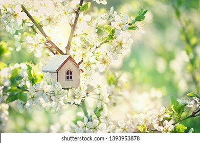 toy house and cherry flowers. spring nature background. concept of mortgage, construction, rental. family and property concept. copy space.