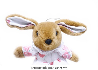 toy rabbit isolated on white
