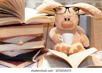 Toy soft rabbit with glasses sits among a pile of books.
