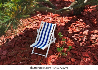 A toy striped beach chair for sunbathing and relaxing is standing in the shade under a bonsai tree on a hot sunny day, sawdust and red tree bark are lying on the ground, garden decoration, play