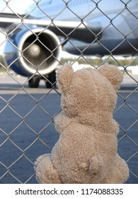 The Toy Teddy Bear meets the plane at the airport