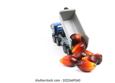 Toy truck dumping oil palm fruitlets