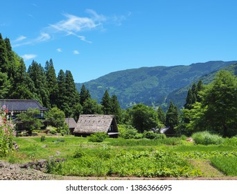 Toyama Prefecture, Japan: Historical village with rice field and farmhouses having very unique thatched roofs.