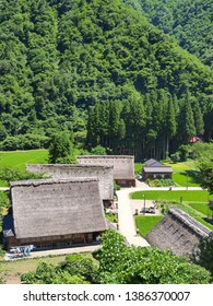 Toyama Prefecture, Japan: Historical village with rice field and farmhouses having very unique thatched roofs.(Suganuma Gassho-style village)