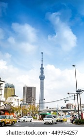 Toyko sky tree in Tokyo, Japan - November 09, 2015: Toyko sky tree in Tokyo with sakura tree, the highest free-standing structure in Japan , Tokyo, Japan on November 09, 2015