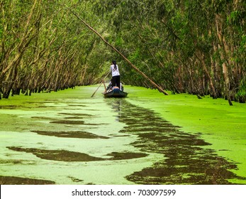 Tra Su forest - a famous destination to travel in Mekong Delta Vietnam.