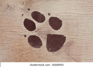 trace of the animal drawn on a wooden texture