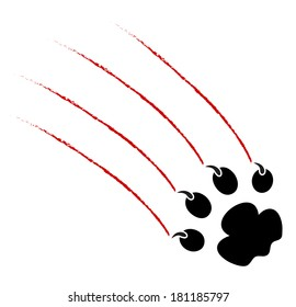 trace of claws of a predator on a white background