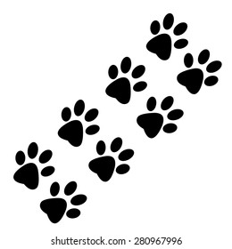 Traces of animal paws on a white background