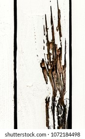 Traces of a claw hand in white painted wood, background for Halloween