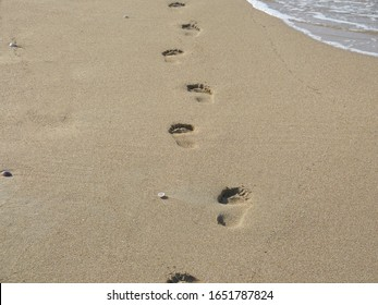 traces in the sand. footprints in the sand