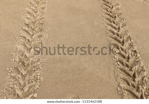 traces-tread-on-wet-sand-600w-1131462188