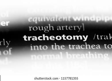 tracheotomy word in a dictionary. tracheotomy concept.