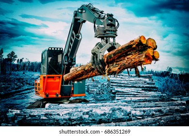 A track hoe log loader is used to move cut conifer fir tree logs on a logging unit site to the landing