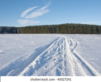Track in snowy field on forest background, sunny winter day