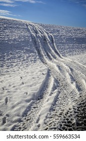 Tracks of 4 wheelers headed up a hill in the snow to enjoy the sport of off-road riding.  Dog tracks are following along beside.