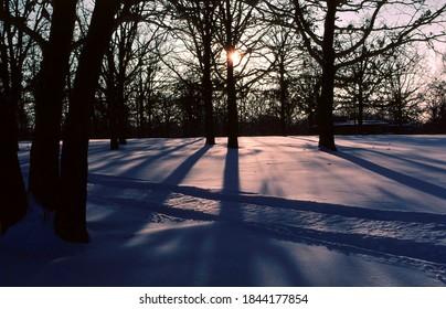 Tracks across fresh snow in this Ozarks winter scene