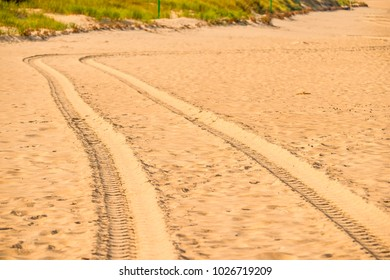 tracks of a military truck in sand