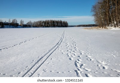 tracks on snow in early spring, Lappeenranta Finland