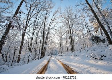 Tracks Through Snowy Road