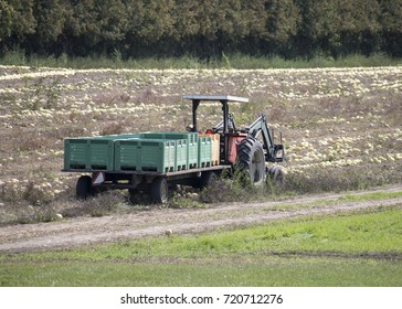 A Tractor Being Used During Harvest