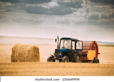 Tractor Collects Dry Grass In Straw Bales In Summer Wheat Field. Special Agricultural Equipment. Hay Bales, Hay Making