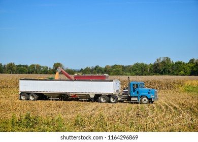 Tractor emptying its load of harvested maize into a waiting semi and trailer using a hopper funnel