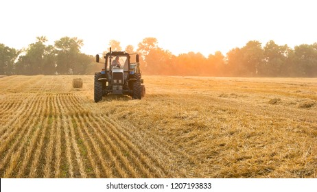 Tractor with farmer on the field. Front view. Making hay bales.