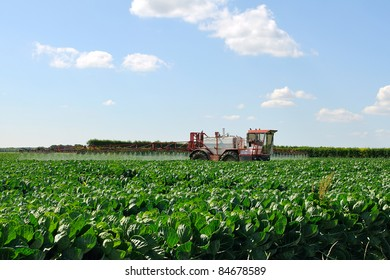 Tractor fertilizes crops