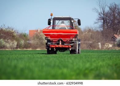 Tractor fertilizing in wheat field
