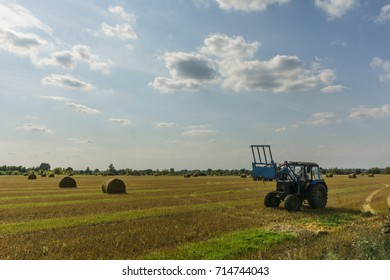 tractor in a field removes hay in the autumn