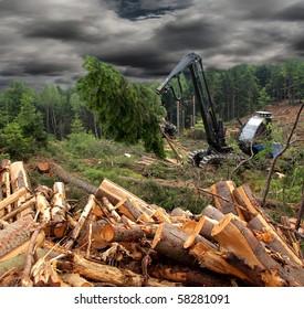 Tractor harvesting wood