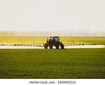 Tractor with the help of a sprayer sprays liquid fertilizers on young wheat in the field. The use of finely dispersed spray chemicals.