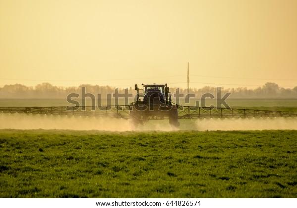 Un tracteur à roues élevées fait de l'engrais sur du jeune blé. Utilisation de produits chimiques pulvérisés finement dispersés. Tracteur sur fond coucher de soleil.